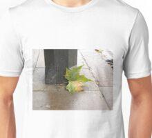 London Plane Tree Leaf Unisex T-Shirt