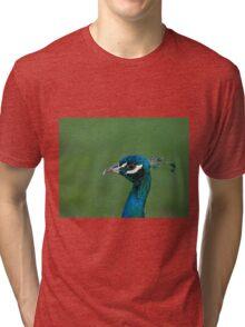 Peacock head shot Tri-blend T-Shirt