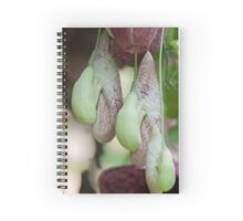 exotic plant Spiral Notebook