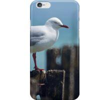 The Jetty Gull iPhone Case/Skin