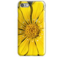 Perfect symmetry iPhone Case/Skin
