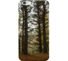 Lace and Needles - Evergreen Openwork in Autumn Forest iPhone Case/Skin