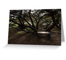 Silver Bench - Sit for a Spell and Enjoy the Peace and Quiet Greeting Card