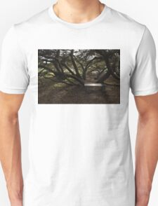 Silver Bench - Sit for a Spell and Enjoy the Peace and Quiet T-Shirt
