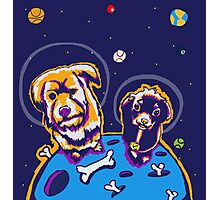 Crater Dogs Photographic Print