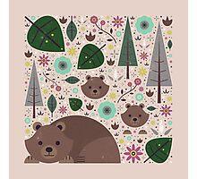 Wild Bears  Photographic Print