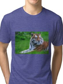 Wild Thing! Tri-blend T-Shirt