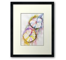 Hollyhock series #14 Framed Print