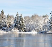 Frozen Pond by Poete100