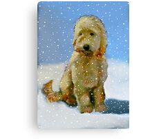 Golden Doodle Dog in Snow: Original Oil Pastel Painting Canvas Print
