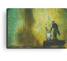 Shelf and Shadow Canvas Print
