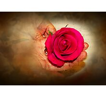 Happy Valentines Day with a Rose Photographic Print