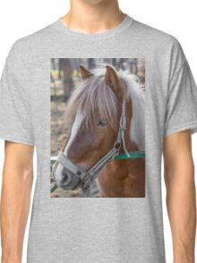 Horse Head close-up Classic T-Shirt