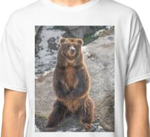 Brown  grizzly bear on a rock Classic T-Shirt