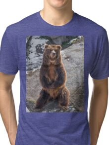 Brown  grizzly bear on a rock Tri-blend T-Shirt