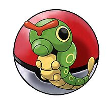 Caterpie pokeball - pokemon Photographic Print