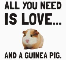 Love And A Guinea Pig by TheBestStore