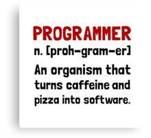 Programmer Definition Canvas Print