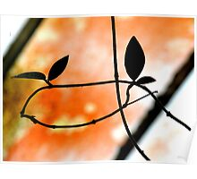 Plant Silhouette Against A Roof Poster