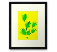 Growing Plants Framed Print