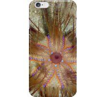 Blue-spotted Sea Urchin iPhone Case/Skin
