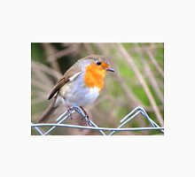 Robin Perching On Wire Fence Unisex T-Shirt