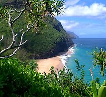 Hanakapiai beach by Brian Harig