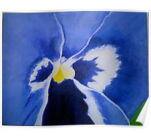 Purple Pansy Poster
