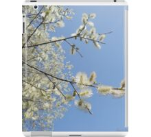 Pussy willow blossom series - spring 2012 iPad Case/Skin