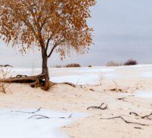 White Sands Lone Tree Sticker