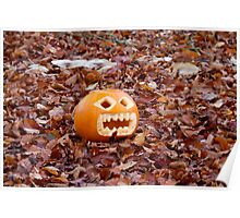 Pumpkin and Beech Leaves Poster
