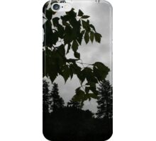 Nature Knows iPhone Case/Skin