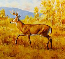 Whitetail Deer in Aspen Woods by csforest