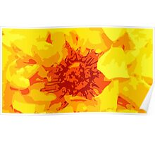 Yellow and red flower Poster