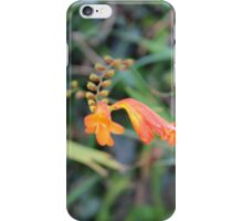 The Wild Blooms iPhone Case/Skin