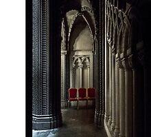 Penrhyn castle-Corridor4 by jasminewang