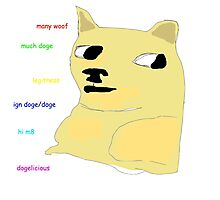 doge  Photographic Print