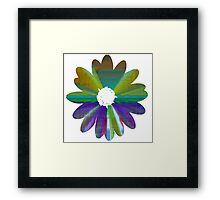 Flower 17 Framed Print