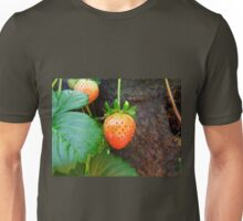 Strawberry In A Basket Unisex T-Shirt