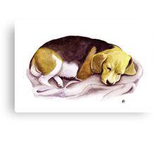 Beagle Watercolor Portrait Canvas Print
