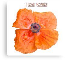 I Love Poppies Metal Print