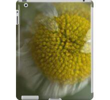 Summer Breeze iPad Case/Skin
