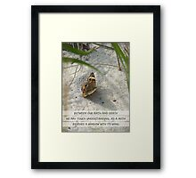 As A Moth Framed Print