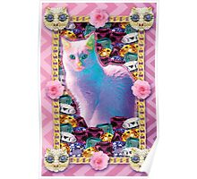 pale pink kitty princess Poster