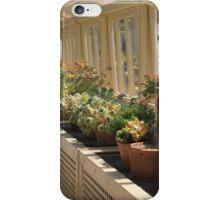 Botanical garden-Dublin  iPhone Case/Skin