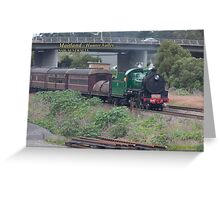Steam Loco 3642 -Maitland NSW Greeting Card