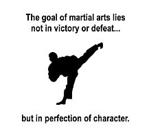 Martial Arts Character Photographic Print
