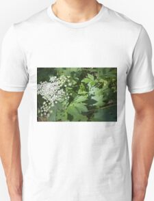 Cow Parsnip Shadow Unisex T-Shirt