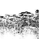 A Field Of Wild Cow Parsnip  by Sandra Foster