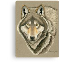 Grey Wolf Portrait Canvas Print